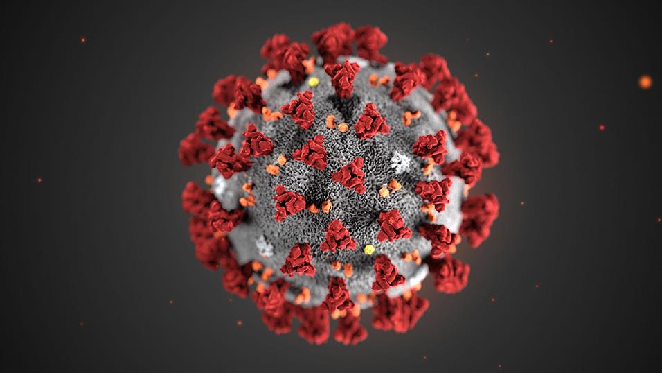 Coronavirus: Real Time Data Visualization in Italy